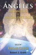 libro Angeles, Arcangeles Y Fuerzas Invisibles