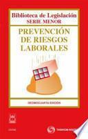 libro Prevención De Riesgos Laborales