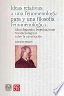 libro Ideas Relativas Una Fenomenologia/ Relative Ideas One Phenomenology