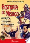 libro Historia De Mexico. Conquista, Virreinato, Independencia.: History Of Mexico. Conquest, Independence.