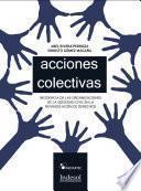 libro Acciones Colectivas En Derecho Mexicano