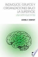 libro Individuos, Grupos Y Organizaciones Bajo La Superficie