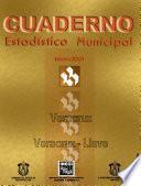 libro Veracruz Veracruz   Llave. Cuaderno Estadístico Municipal 2001