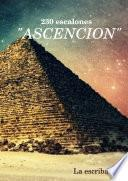 libro 230 Escalones  Ascencion